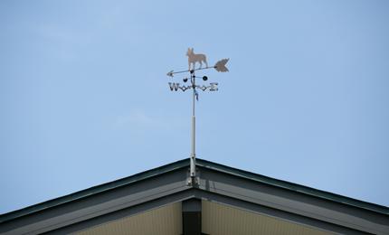 屋根の上にまわる風見は、よく見ると鳥ではなく犬のシルエット