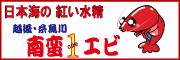 """◆Kaneta◆オンリー""""1""""の住まいづくり"""